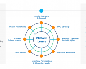 Slide showing how Inputs of leading indicators, using key platform levers results in outputs